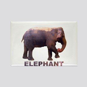 elephant4 Rectangle Magnet