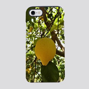 The Lemons of Sorrento, Italy iPhone 7 Tough Case
