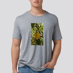 The Lemons of Sorrento, Ita Mens Tri-blend T-Shirt
