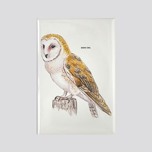 Barn Owl Bird Rectangle Magnet