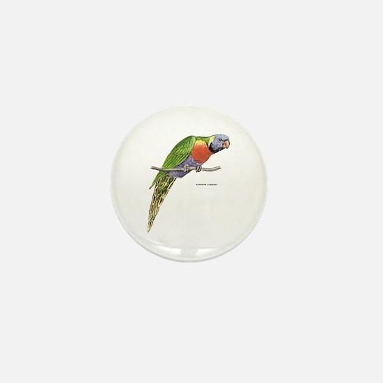 Rainbow Lorikeet Bird Mini Button