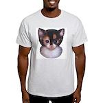 Blue Eyed Kitten 2 Ash Grey T-Shirt