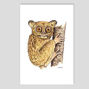 Tarsier Animal Postcards (Package of 8)
