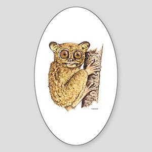 Tarsier Animal Sticker (Oval)