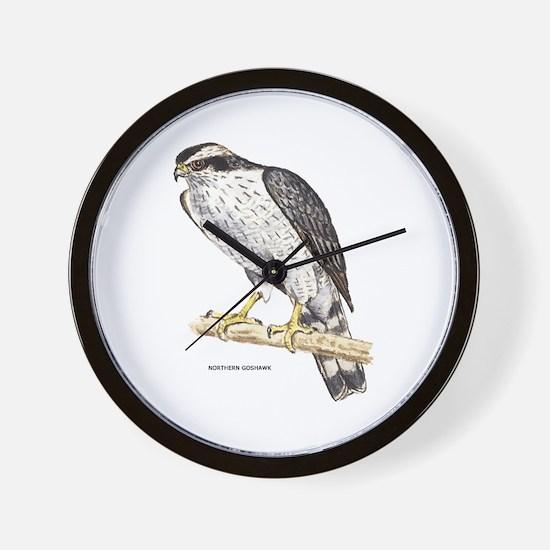 Northern Goshawk Bird Wall Clock