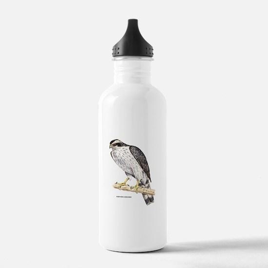 Northern Goshawk Bird Water Bottle