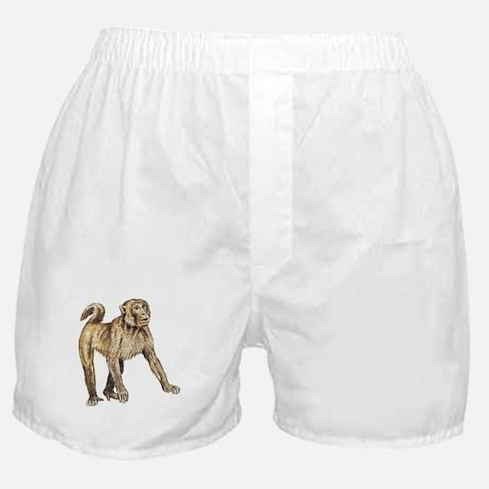 Macaque Boxer Shorts