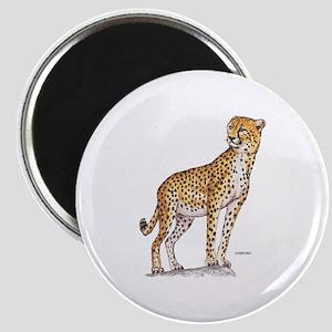 Cheetah Big Cat Magnet