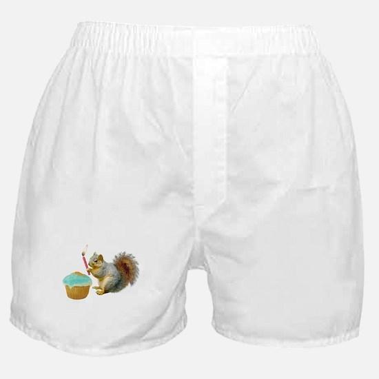 Squirrel Candle Cupcake Boxer Shorts