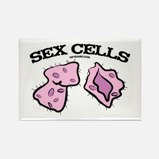 Sex Cells Rectangle Magnet