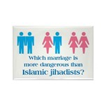 More Dangerous Than Jihadists Rectangle Magnet (10