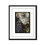 Stray with Leaves - Digital Photography Framed Pan