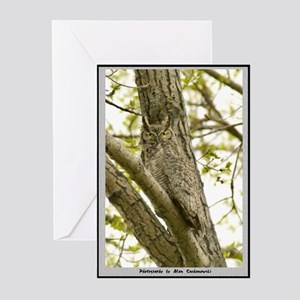 Horned Owl Note Cards (Pk of 10)