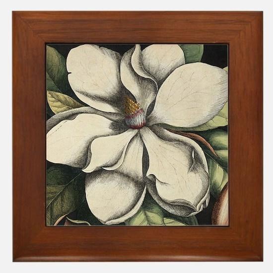 Vintage Magnolia Framed Tile