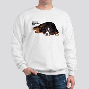 Bernese Mountain Dog - Sweatshirt