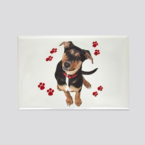 Puppy and Prints Rectangle Magnet
