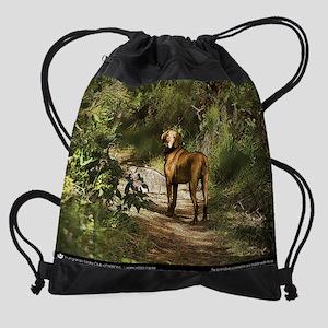 Henry_CalendarPrint Drawstring Bag