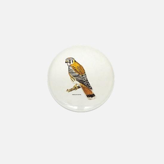 American Kestrel Bird Mini Button