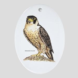 Peregrine Falcon Bird Ornament (Oval)