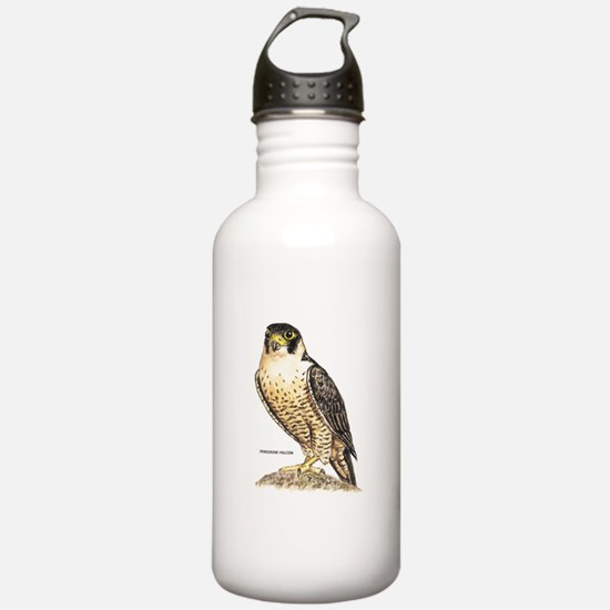 Peregrine Falcon Bird Water Bottle