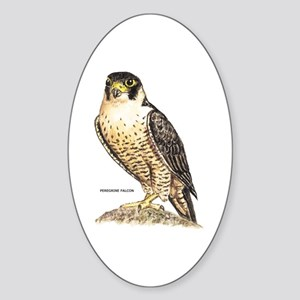 Peregrine Falcon Bird Sticker (Oval)