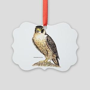 Peregrine Falcon Bird Picture Ornament