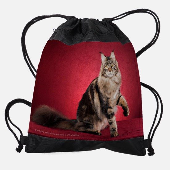 4 Drawstring Bag