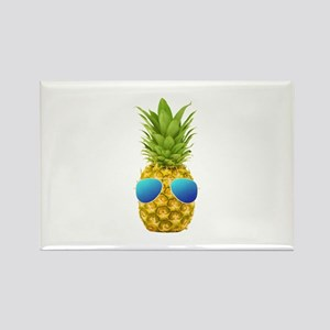 Cool Pineapple Magnets