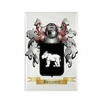 Benjamin Rectangle Magnet (10 pack)