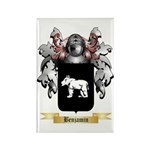Benjamin Rectangle Magnet (100 pack)