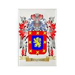 Bengtsson Rectangle Magnet (10 pack)
