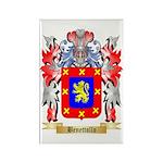 Benettollo Rectangle Magnet (100 pack)