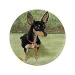 StephanieAM Chihuahua 3.5