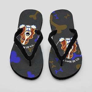 Basset Hound IAAM Flip Flops