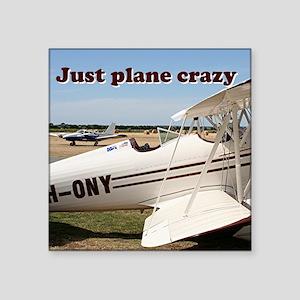 Just plane crazy: Waco aircraft Sticker