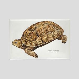 Desert Tortoise Rectangle Magnet