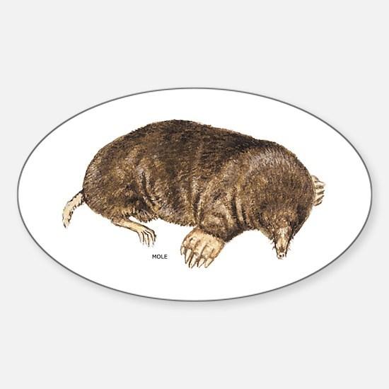 Mole Animal Sticker (Oval)