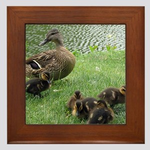 Duck mom and Ducklings Framed Tile