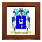 Belyaev Framed Tile