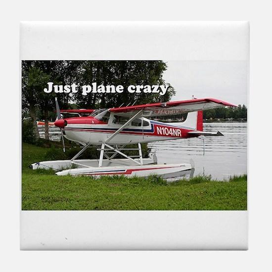 Just plane crazy: Cessna float plane, Alaska, USA