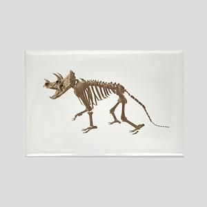 Dino Bones Rectangle Magnet