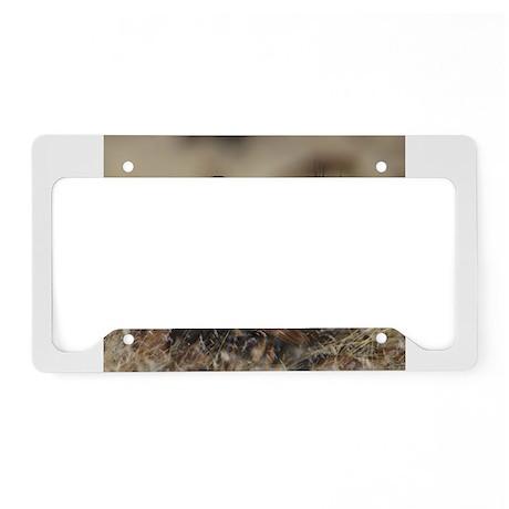 Sage Grouse Strut License Plate Holder