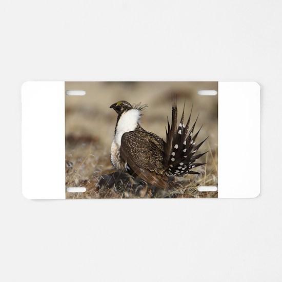 Sage Grouse Strut Aluminum License Plate