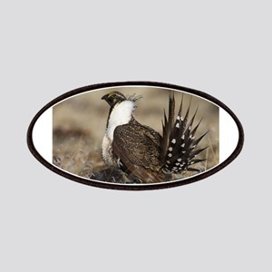Sage Grouse Strut Patches