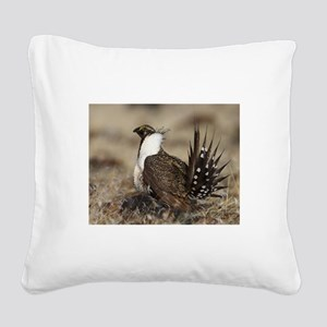 Sage Grouse Strut Square Canvas Pillow