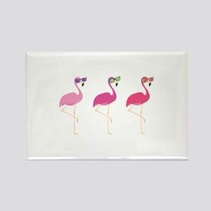 Cool Flamingos Rectangle Magnet
