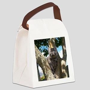 Fluffy Grey Kitten Canvas Lunch Bag