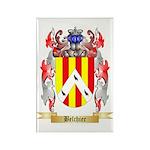 Belchier Rectangle Magnet (100 pack)