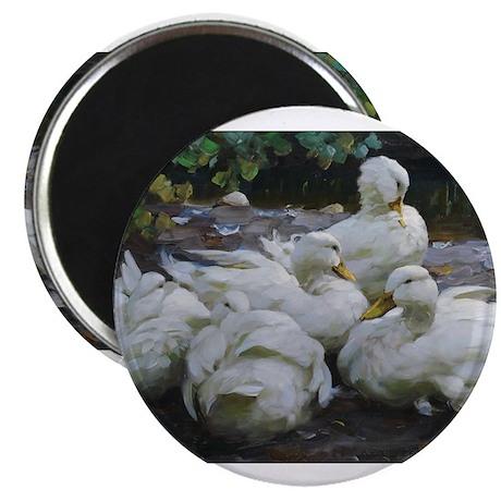 Flock of White Ducks Magnet