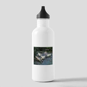 Floating Flock of Ducks Water Bottle